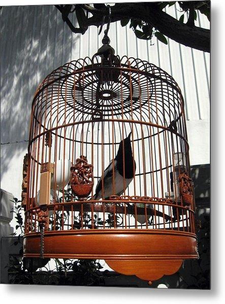 China Bird In Mahogany Cage Metal Print