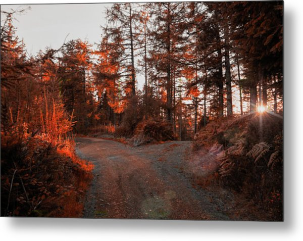 Metal Print featuring the photograph Choose The Road Less Travelled by Ian Thompson