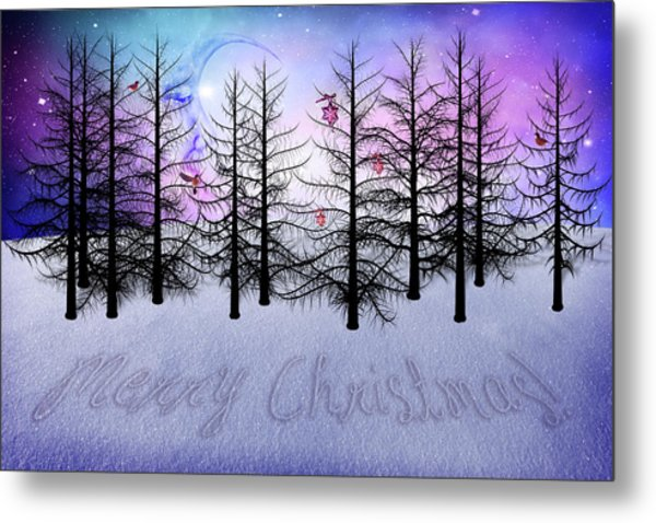Christmas Bare Trees Metal Print