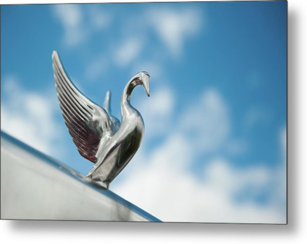 Chrome Swan Metal Print