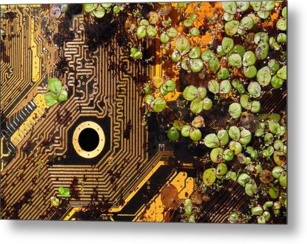 Circuit Sprouts Metal Print