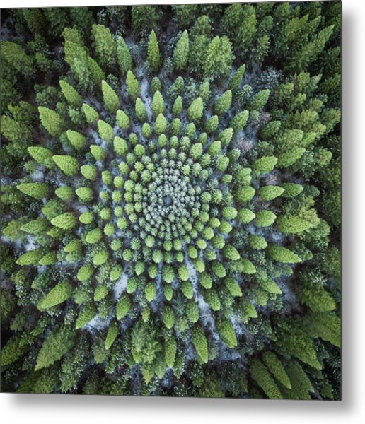 Circular Symmetry Metal Print
