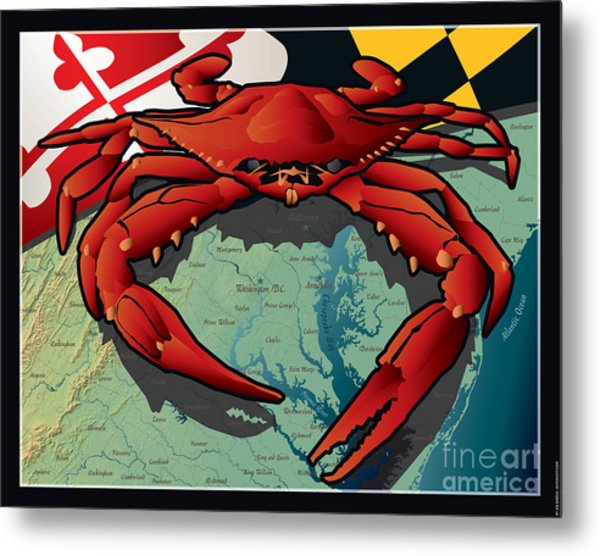 Citizen Crab Of Maryland Metal Print
