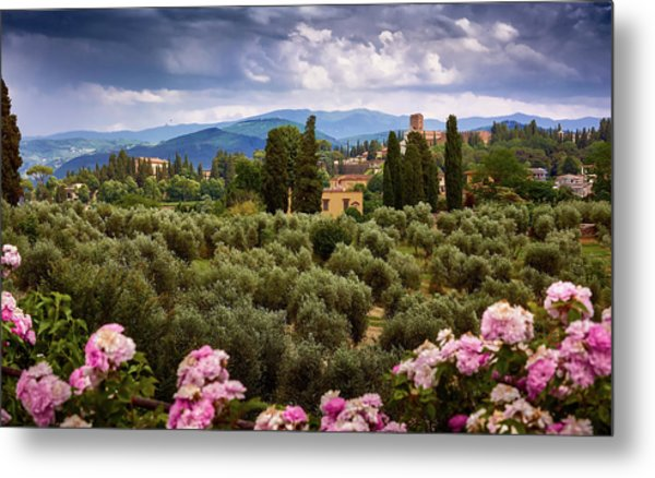 Tuscan Landscape With Roses And Mountains In Florence, Italy Metal Print