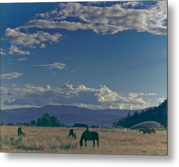 Classic Country Scene Metal Print
