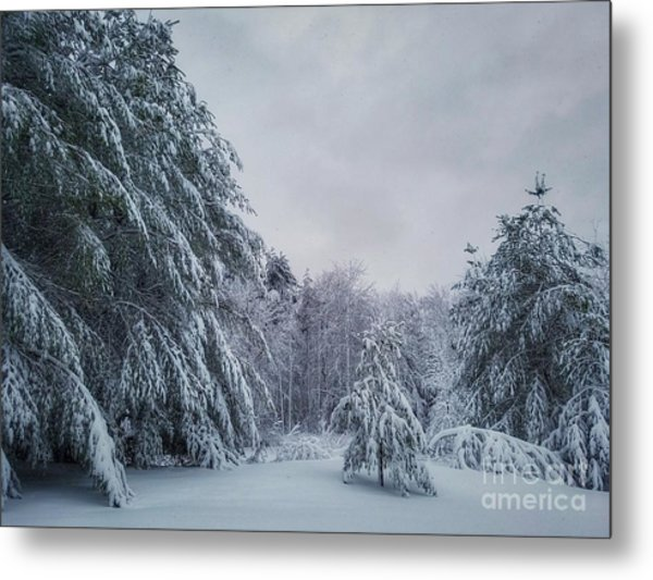 Classic Winter Scene In New England  Metal Print