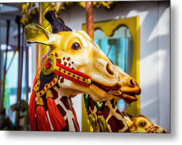 Close Up Giraffe Ride Metal Print