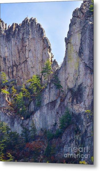 Close-up Of Seneca Rocks Top Edge Metal Print