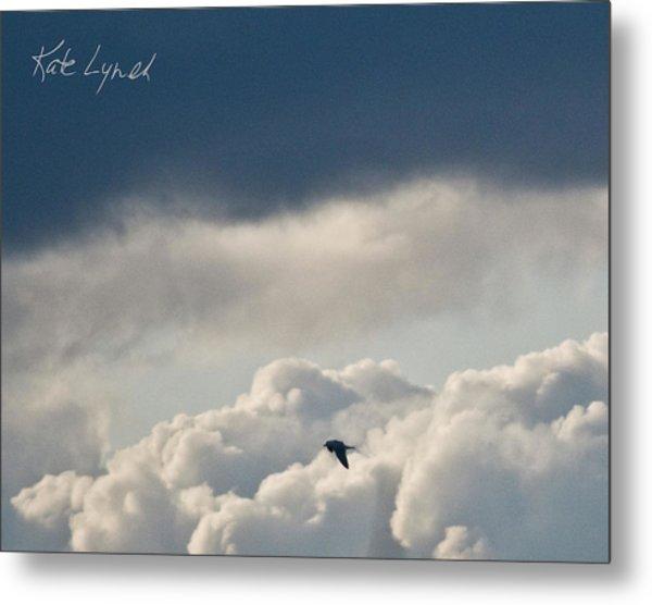 Cloud Flyer Metal Print
