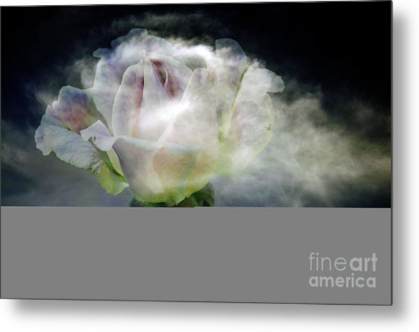 Cloud Rose Metal Print