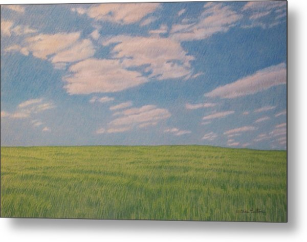 Clouds Over Green Field Metal Print