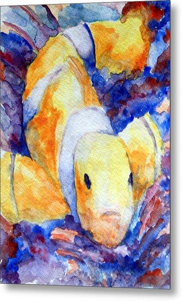 Clown Fish Metal Print by Mike Segura