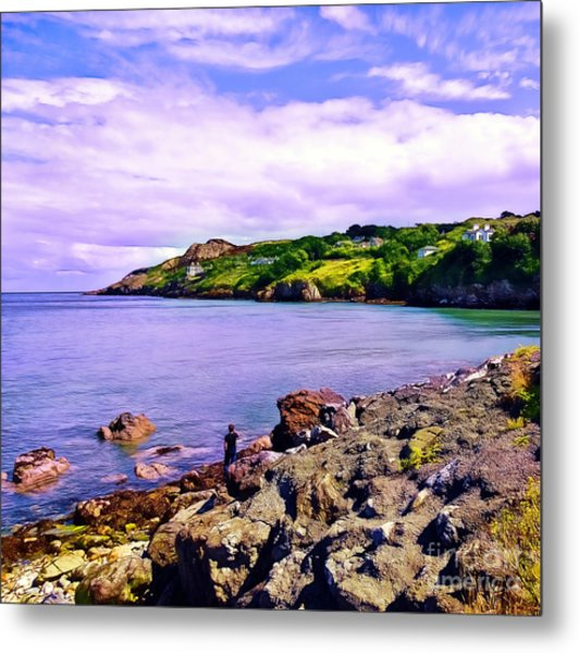 Rocky Coast At Howth Metal Print