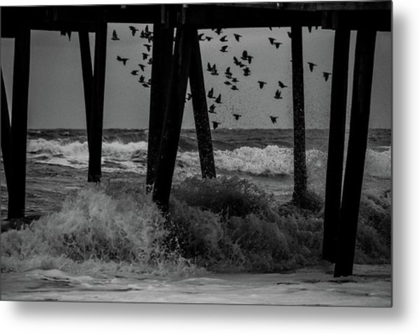 Coastal Movements Metal Print