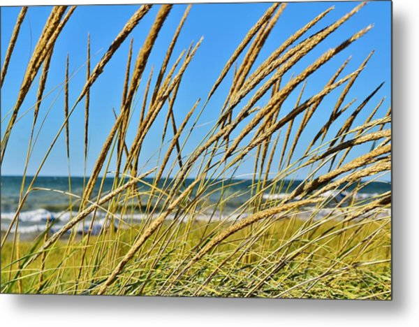 Coastal Relaxation Metal Print
