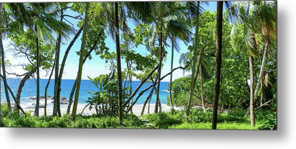 Coata Rica Beach 1 Metal Print