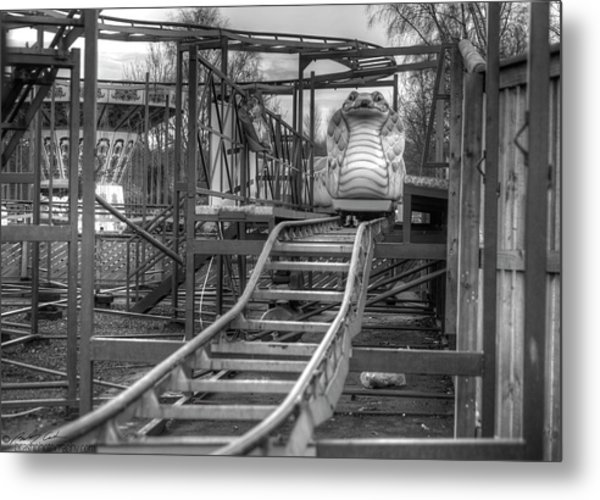 Cobra Coaster Metal Print