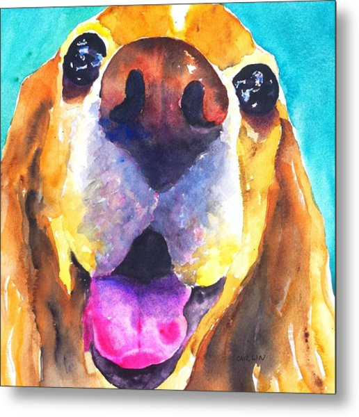 Cocker Spaniel Dog Smile Metal Print
