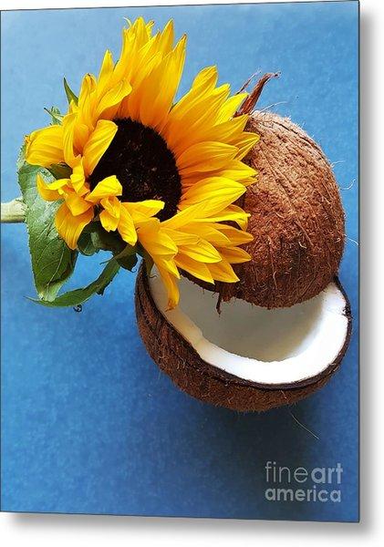 Coconut And Sunflower Harmony Metal Print