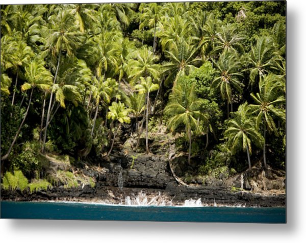 Coconut Palm Covered Hillsides In Bay Metal Print