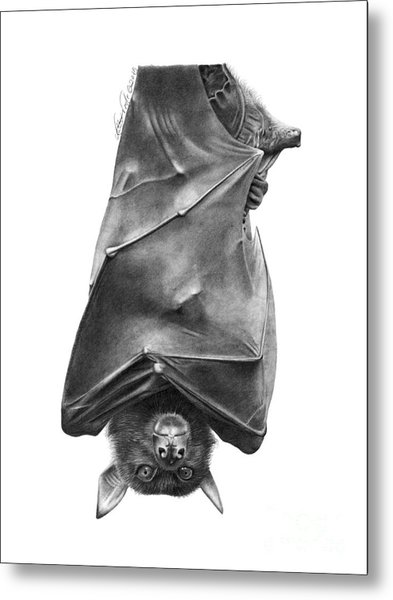 Coffie The Fruit Bat Metal Print