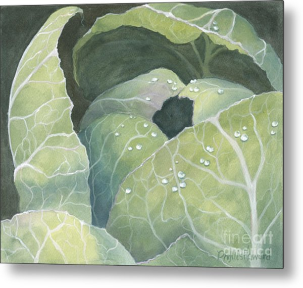 Metal Print featuring the painting Cold Crop by Phyllis Howard