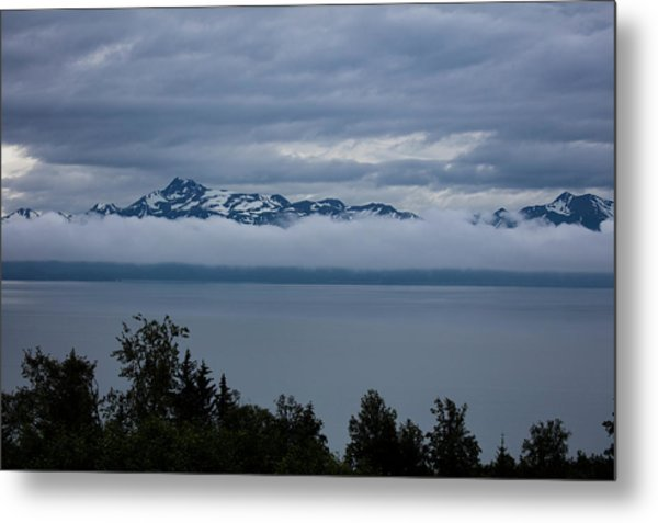 Cold Morning In Alaska Metal Print
