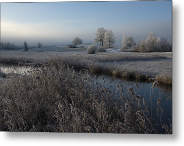 Cold Metal Print by Nina Pauli