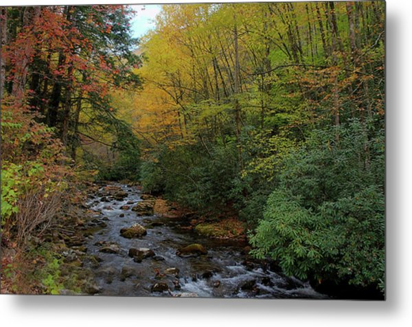 Cold Stream Metal Print