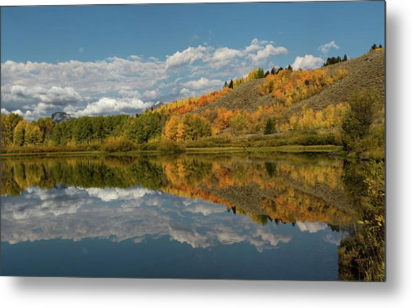 Color At Oxbow Bend Metal Print