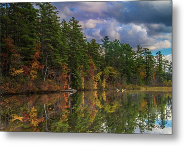 Color At Songo Pond Metal Print