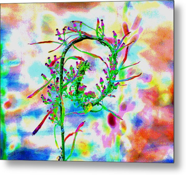 Color Curl Metal Print