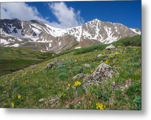 Colorado 14ers Grays Peak And Torreys Peak Metal Print