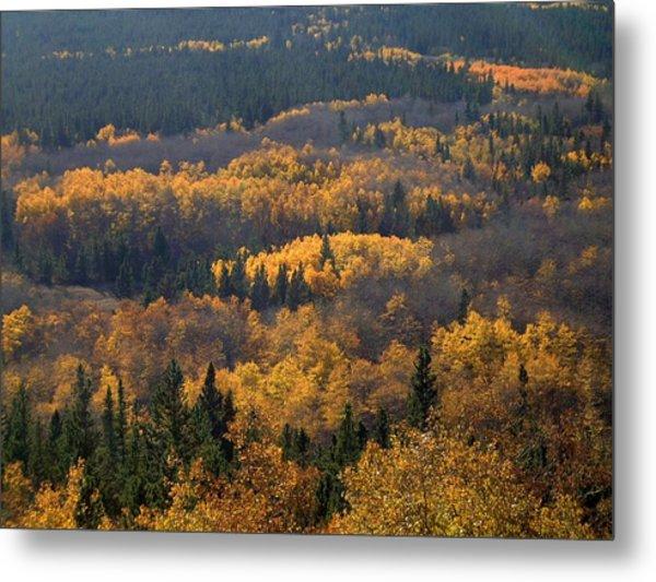 Colorado Autumn - 1 Metal Print