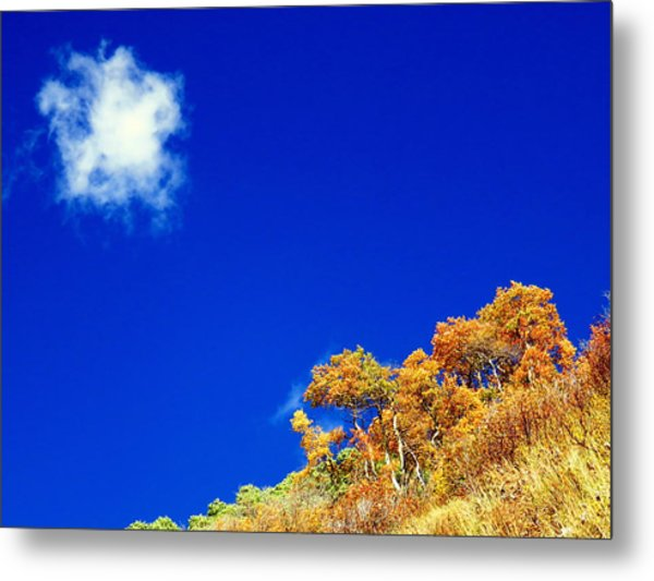 Metal Print featuring the photograph Colorado Blue by Karen Shackles