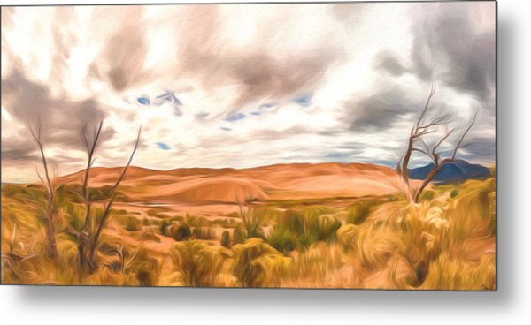 Colorado Dunes Metal Print