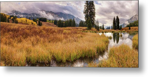Colorado Fall Colors 3  Metal Print