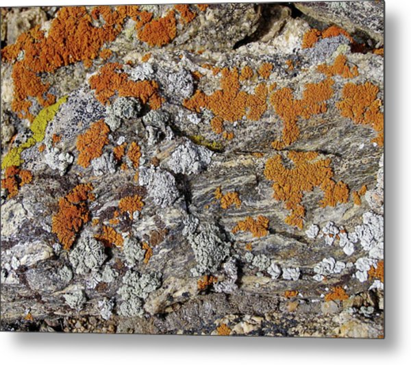 Colorado Rock Life Metal Print