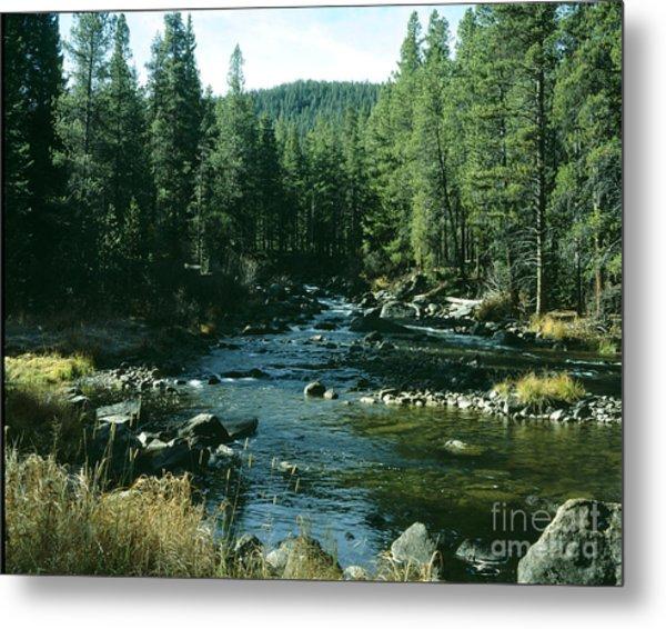 Colorado Stream1 Metal Print
