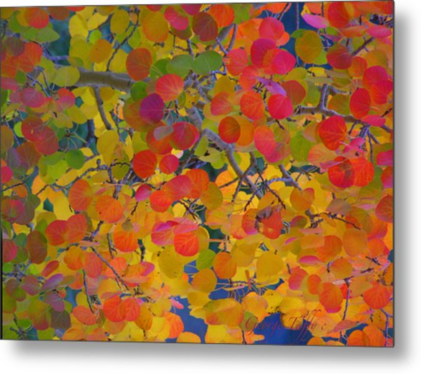 Colorful Aspen Metal Print