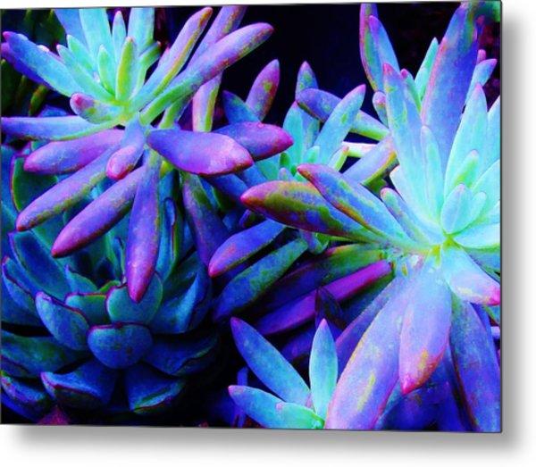 Colorful Dancing Succulents Metal Print