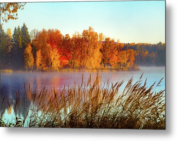 Colorful Dawn On Haley Pond Metal Print