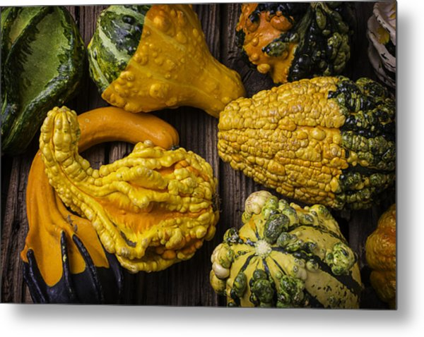 Colorful Gourds Metal Print