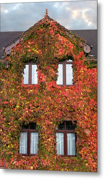 Colorful Ivy House Ireland Metal Print by Pierre Leclerc Photography