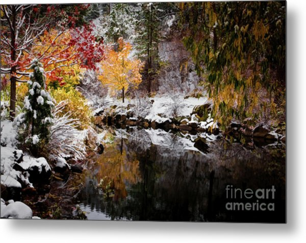 Colorful Pond Metal Print