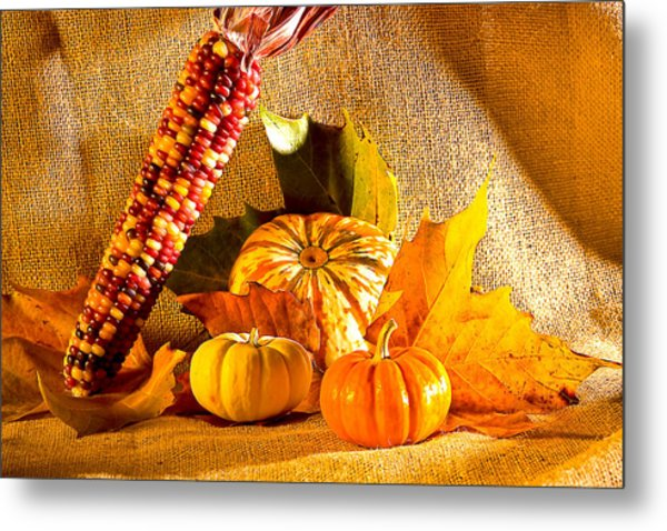 Colors Of Autumn Metal Print by Naman Imagery