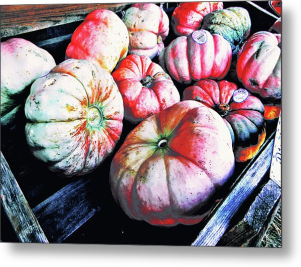 Metal Print featuring the photograph Colors Of Autumn by Pacific Northwest Imagery