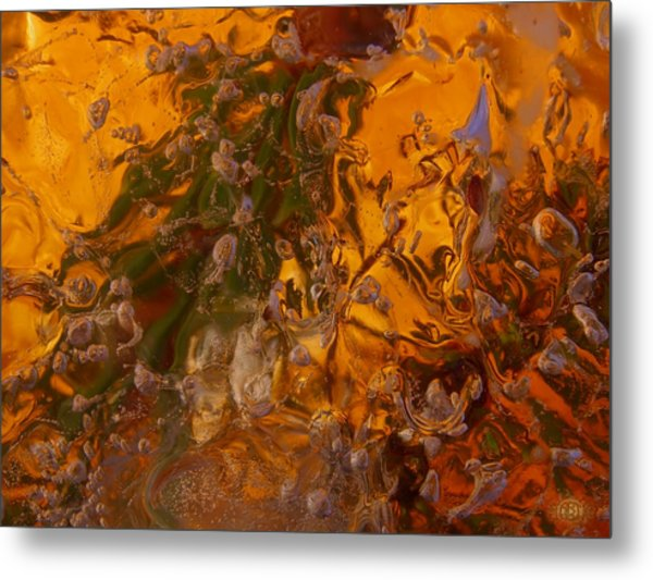 Colors Of Nature 2 Metal Print