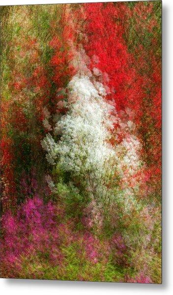 Colors Of  Paradise Metal Print