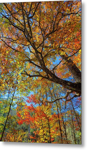 Colors On High Metal Print